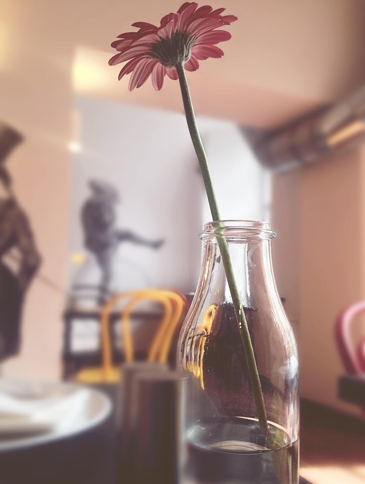 kffwiatekk